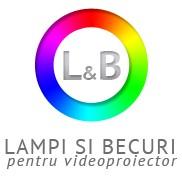 Lampi si becuri pentru videoproiector